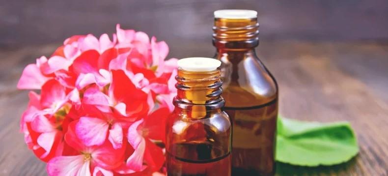 What Is Geranium Oil?